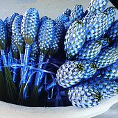 Petits fuseaux de lavande de Provence appelés les pitchouns